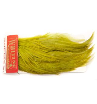 Whiting Bugger Pack - Olive (White Dyed)