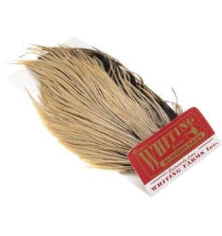 Whiting Bugger Pack - Silver Badger