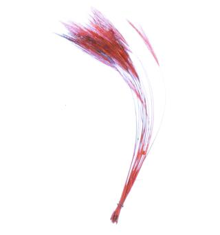 Stripped Hackle Quills - Red Veniard