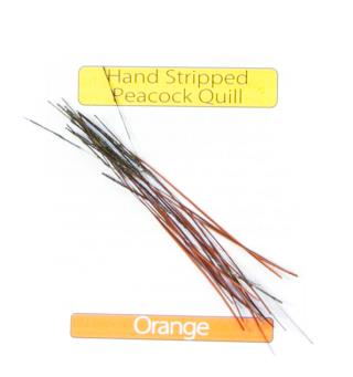 Stripped Peacock Quills - Orange Veniard