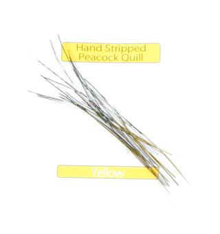 Stripped Peacock Quills - Yellow Veniard