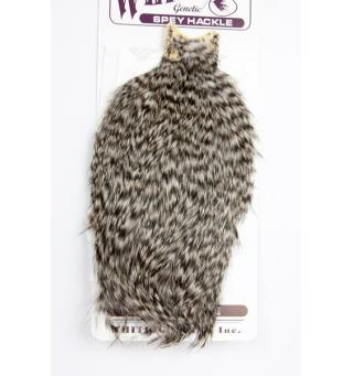 Whiting Spey Hen Cape - Grizzly