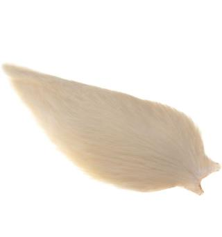 Whiting American Rooster Cape White