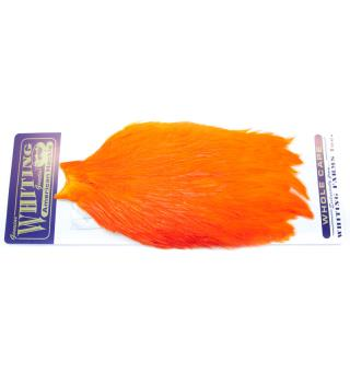 Whiting American Rooster Cape Orange