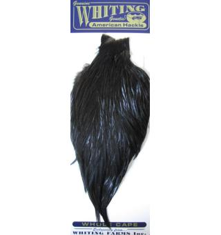 Whiting American Rooster Cape Black