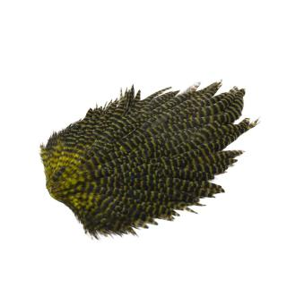 Feathermaster Rooster Cape Grizzly/Olive