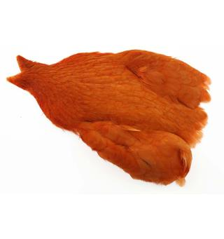 Whiting Hen Cape Burnt Orange