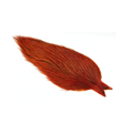 Whiting Coq De Leon Rooster Cape Badger/Burnt Orange