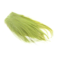 Whiting Bugger Pack - Golden Olive